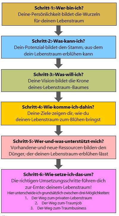 6-Schritte-System